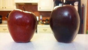 Which apple is real? Others can only taste and see that the Lord is good when we give them real Spiritual fruit.